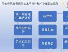 肋软骨采集经验的分享 (流程 图解 说明)深圳美莱版本
